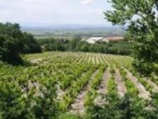Ambiente/ Una brutta Italia distrugge i suoli agricoli