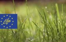 Dall'Ue il programma LIFE. Ai governi farne buon uso.